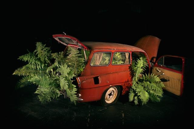 Little Car of Horror